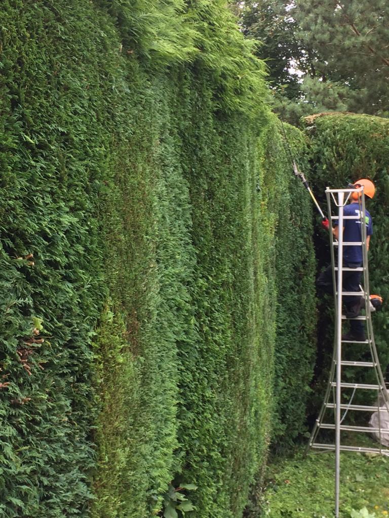 hedge cutting gloucestershire